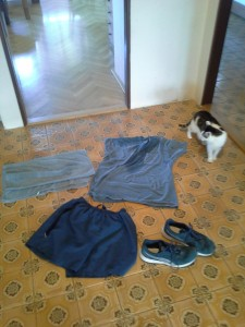 Blue Workout Gear. Not Pictured: Photographer in only socks (you're welcome)